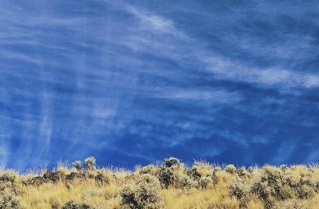 Warblr Photography: Hiking the basalt columns trail outside Keremeos. #latergram