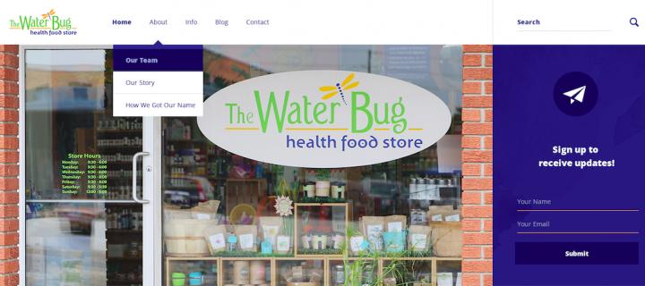 The Water Bug: Website Development