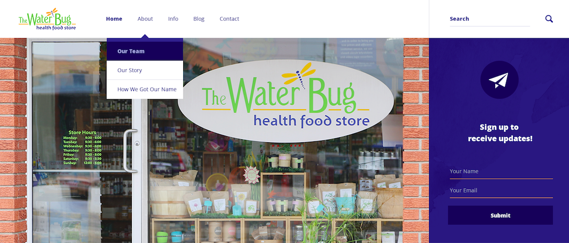 The Water Bug: Website Development